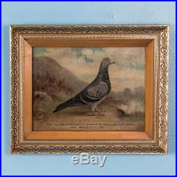 Antique Early 20th Century Original English Oil on Canvas Painting of a Pigeon