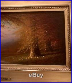 Harvey Joiner, Original Oil Painting on Board of Kentucky Beech Woods